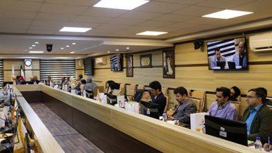 Photo of برگزاری سومین کارگاه حقوق سلامت و نظارت بر امور سلامت
